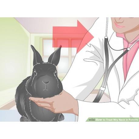 خدمات داروی ضد انگل