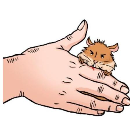 همسترم دست من را گاز گرفته است