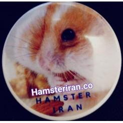پیکسل همستر ایرانی مدل همستر