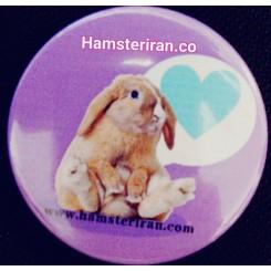 پیکسل همستر ایرانی مدل خرگوش