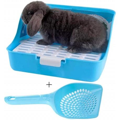 آموزش صحیح دستشویی به خرگوش شکلان و جوندگان