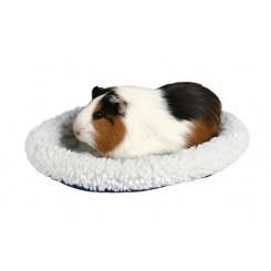 تخت خواب خوکچه هندی